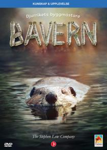 Bävern – Djurrikets byggmästare