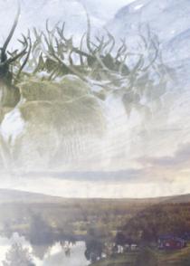 Gállok – Kampen om sameland